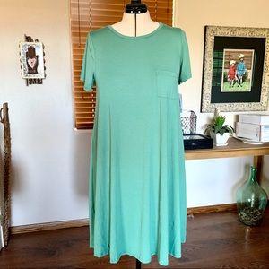 """Minty green LuLaRoe """"Carly"""" swing dress w/ pocket"""